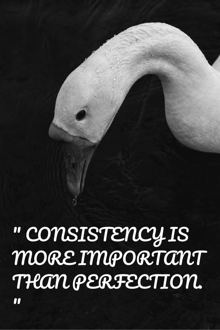 Quotes for Concentration