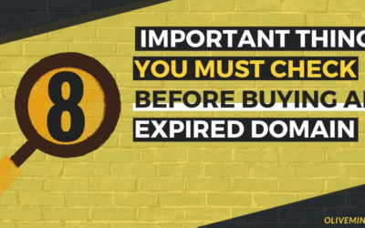 8 Important Things You Must Check Before Buying Expired Domains